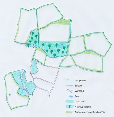 Manor Farm Env Features Map 2011