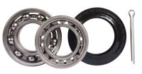 Rear Wheel Bearing Kit 71-79 & T25 (except syncro).   251-598-287A