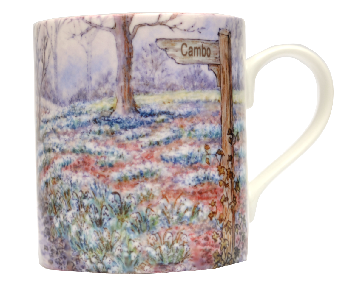 Mugs & Coasters-Snowdrop Wood