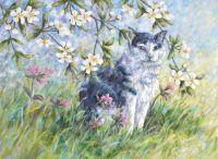 Beneath the Blossom