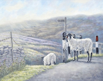 Original Painting - Moors Sheep