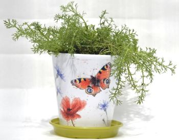 Plant Pot - Peacock Butterfly