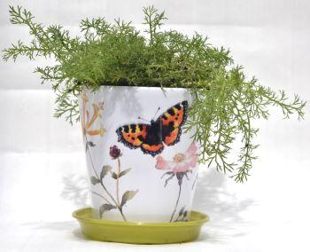 Plant Pot - Tortoiseshell Butterfly