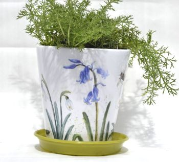 Plant Pot - Spring Mix