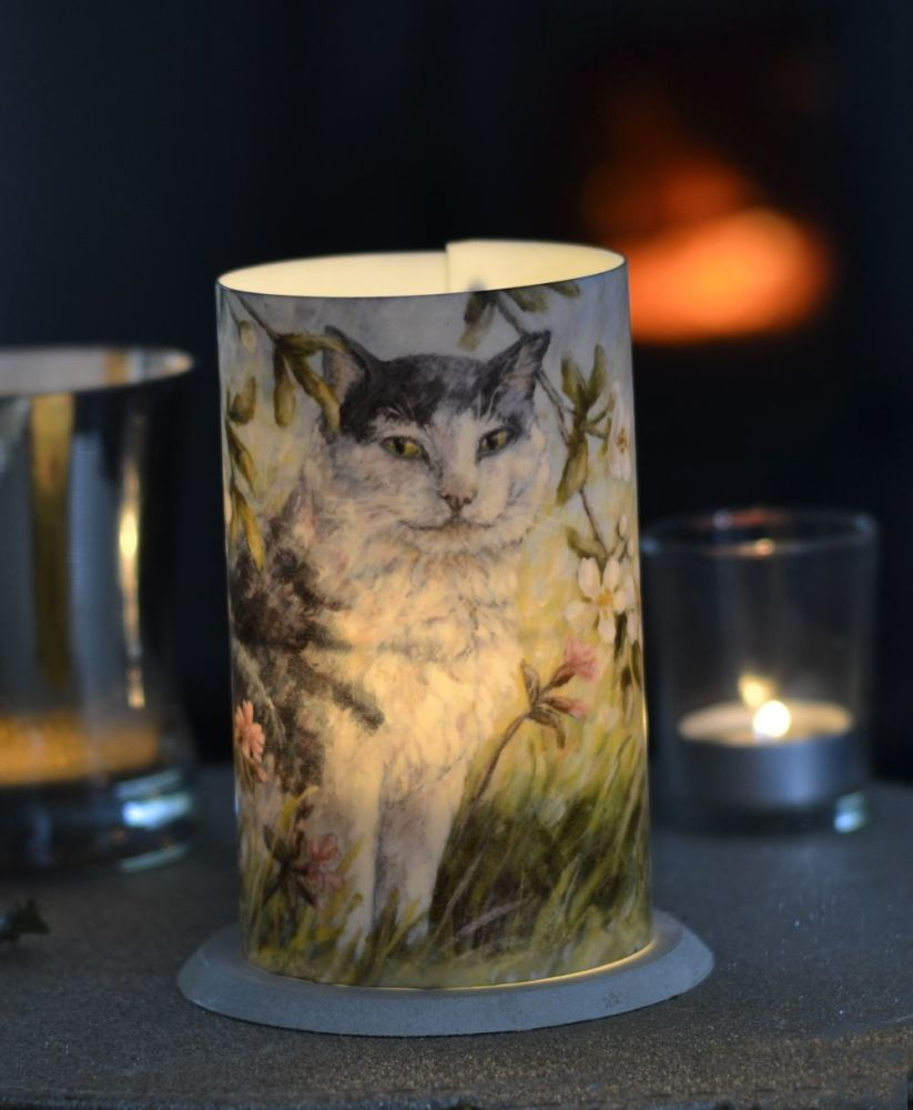 LED Tealight Lanterns - Blossom Cat