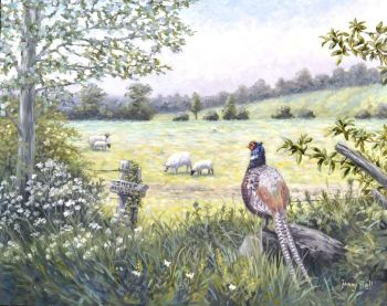 Original Paintings - A Pheasent View