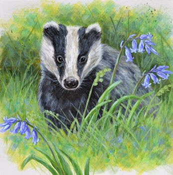 Small Canvas - Badger & Bluebells 2