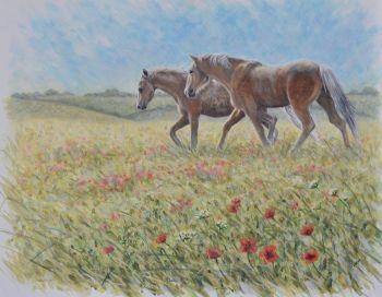 Original Paintings - Through the Poppies
