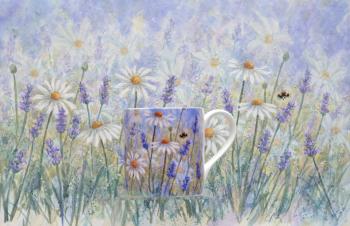 Daisy & Lavender