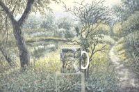 Sunny Riverbank