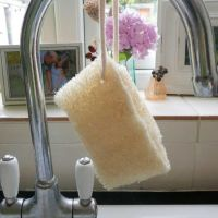 Loofah Washing-Up Sponge