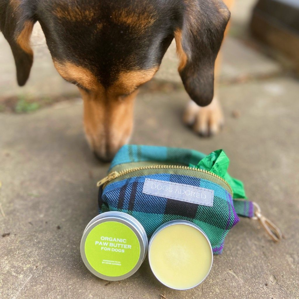 Dog Paw Butter 30ml