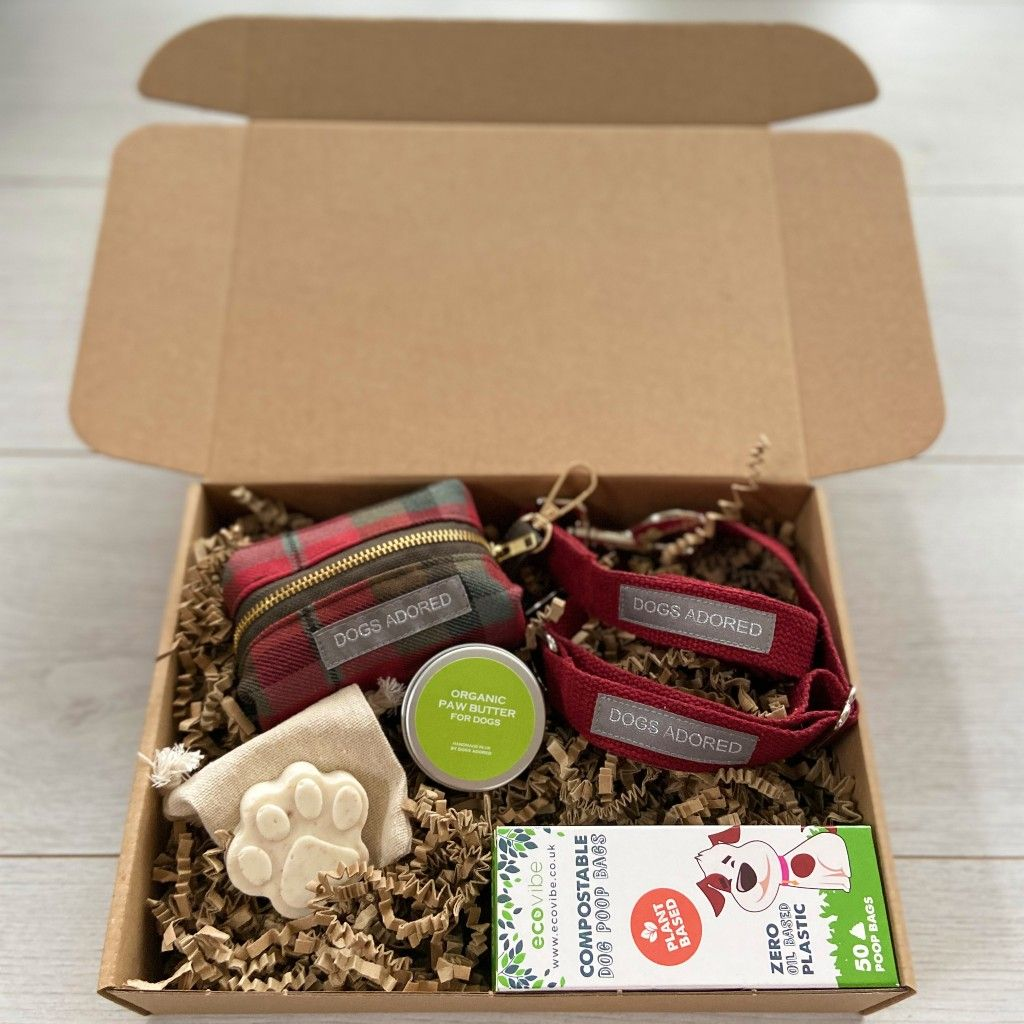 Eco Dog Geek Starter Set