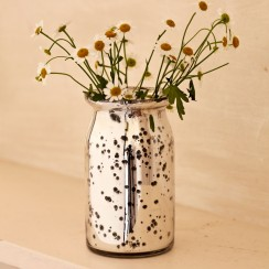 Mirrored metal vase
