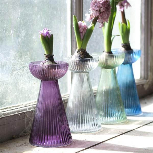 nkuku hyacinth bulb coloured glass vase