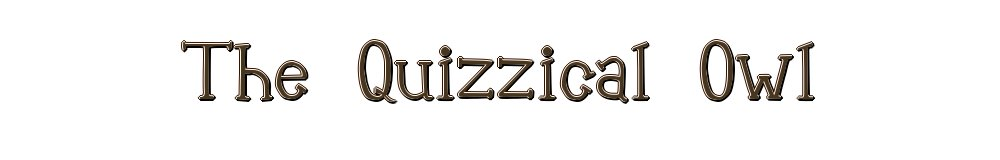 The Quizzical Owl, site logo.