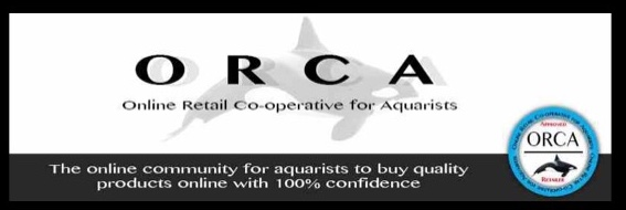 orca banner
