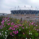 London Olympic Stadium 5 Nov 2011
