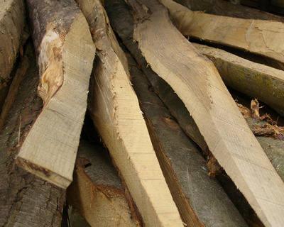 Chestnut Rail ( Cleft )