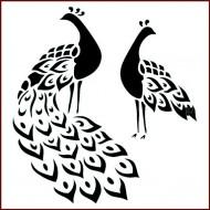 Imagination Craft 15cm x 15cm Stencil - Peacocks