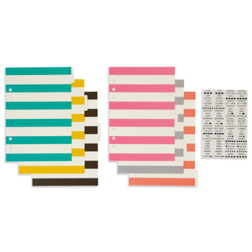 Carpe Diem Basic Dividers