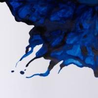 Winsor and Newton Ink - Ultramarine