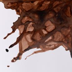 Windsor and Newton Ink - Peat Brown