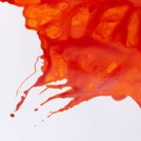 Winsor and Newton Ink - Orange