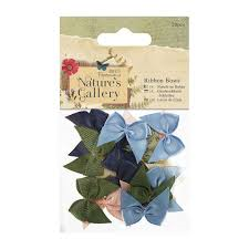 Natures Gallery Ribbon Bows 20pcs