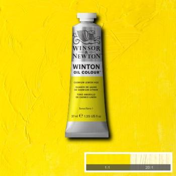 Winton Oil Colour - Cadmium Lemon Hue