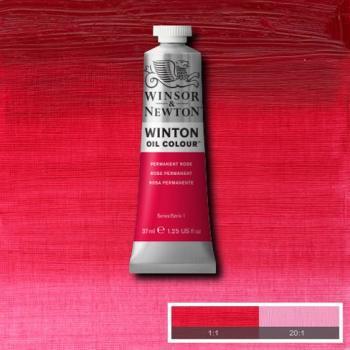 Winton Oil Colour - Permanent Rose