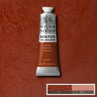 Winton Oil Colour - Light Red