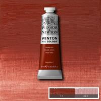 Winton Oil Colour - Indian Red