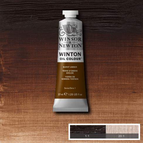 Winton Oil Colour - Burnt Umber