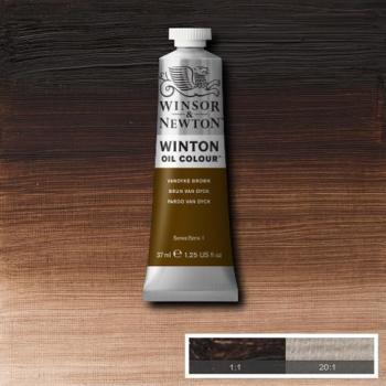 Winton Oil Colour - Vandyke Brown