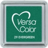 Evergreen - VersaColor