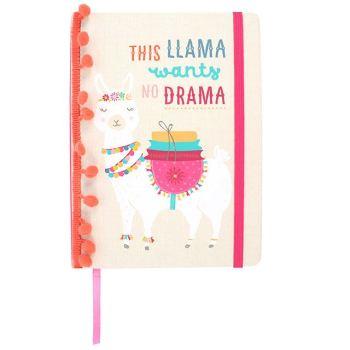 Llama Notebook A5