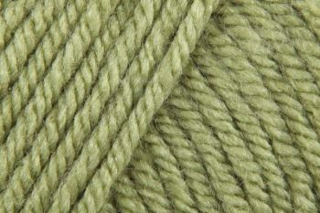 Stylecraft Special Chunky Yarn - Meadow 1065