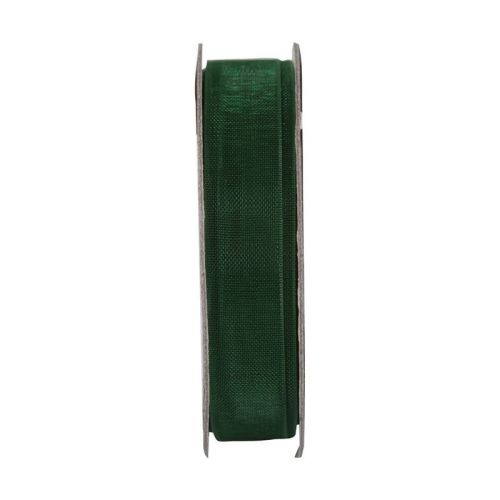 Everyday Ribbons 3m organza - Evergreen