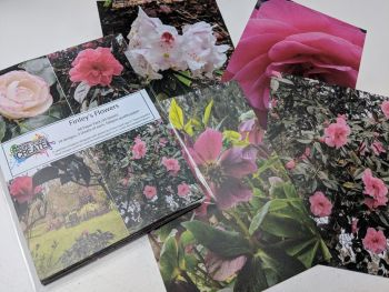 Finley's Flowers A6 Paper Pack - perfect for decoupage