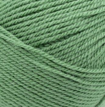 Stylecraft Special DK (Double Knit) - Cypress 1824