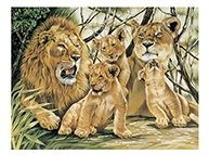 Reeves Pride of Lions Large Paint by Numbers