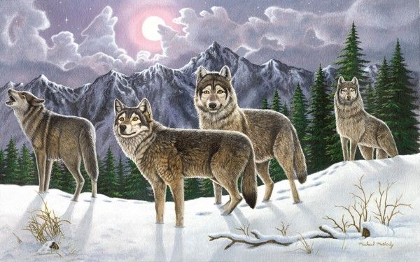 Royal and Langnickel Painting by numbers  : Wolves