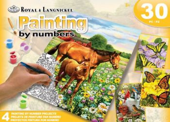 Royal & Langnickel Paint By Numbers Activity Fields Box Set 2