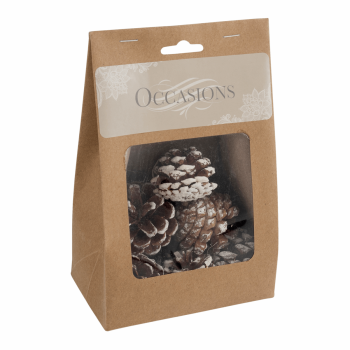 Pine Cones: White Tipped: 9 Pieces