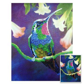 Craft Artist Diamond Art Kit - Humming Bird