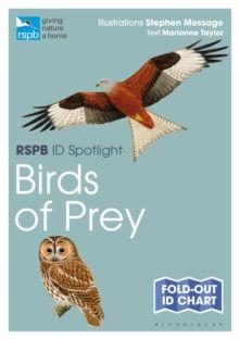 RSPB ID Spotlight - Birds of Prey by Marianne Taylor