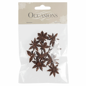 Dried Star Anise: 10 Pieces