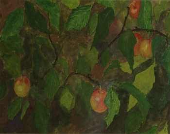 Wild Plums Eileen Coxon