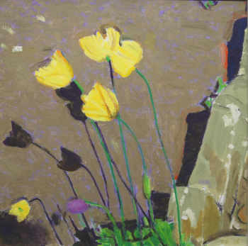 David Page Iceland Poppies 58 x 58cm